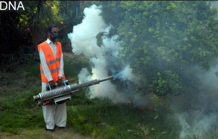 1713 dengue cases reported in Sindh