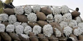 Indian cotton exports to Pakistan slump amid tensions