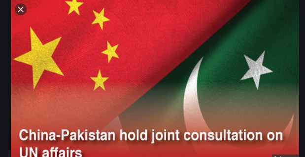 China, Pakistan hold consultations on UN Affairs