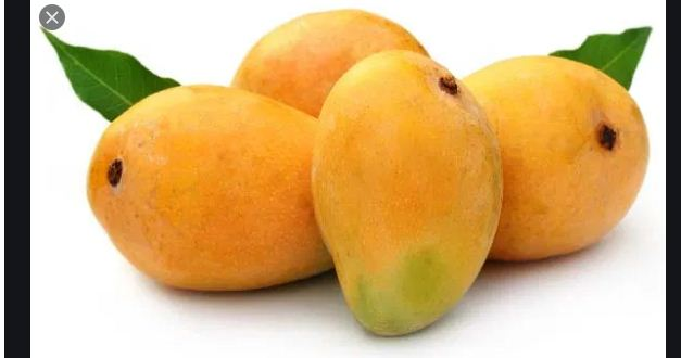 Pakistan, China to boost mango industry through joint efforts: Chinese expert