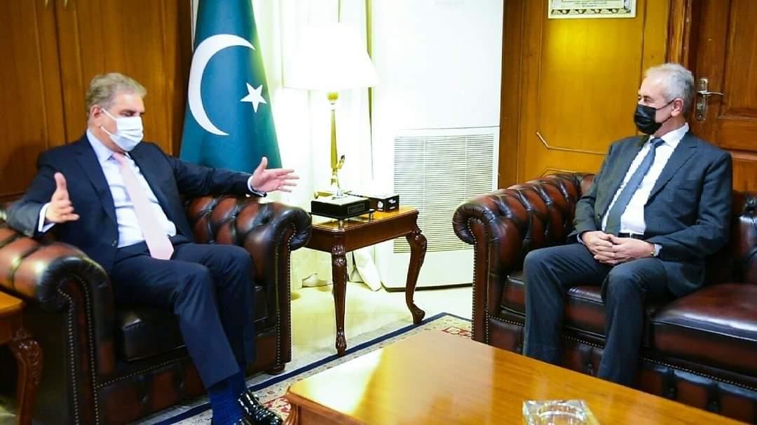 FM Qureshi, Palestinian envoy slam Israeli aggression